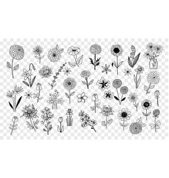 Set doodle sketch flowers vector
