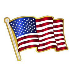Stars and stripes pin padge vector
