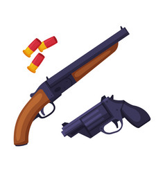 weapon set shotgun gun and bullets hunting vector image