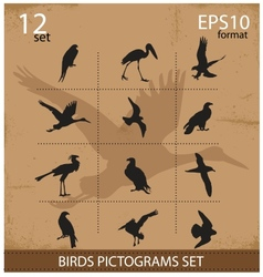 Set of silhouettes birds symbols vector image vector image