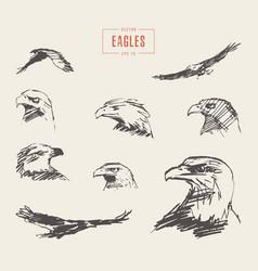 set realistic eagles hand drawn sketch vector image vector image