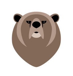 bear face front view vector image