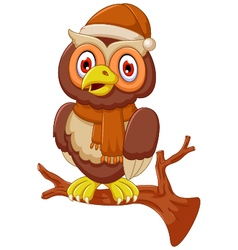 Cute owl cartoon standing on branch vector