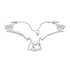 eagle line art 04 vector image