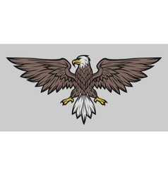 Eagle mascot spread wings Color version vector