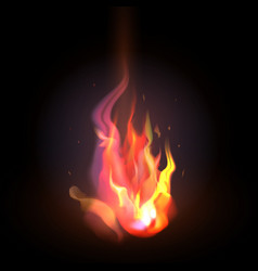 Isolated realistic orange and red fire flame on a vector