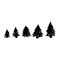 set of fir tree silhouettes black grunge vector image