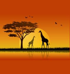 silhouette giraffe at lake of savanah vector image