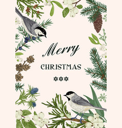 christmas card with two birds vector image