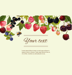 Berry horizintal banner vector image