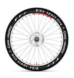 bicycle wheel with a best sports tire on white vector image