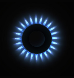 Burning stove gas burner realistic vector