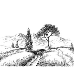 Field landscape pencil drawing vector