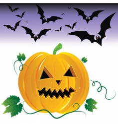 Halloween pumpkin and night bats vector image