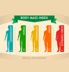 man body mass index info chart male silhouette vector image