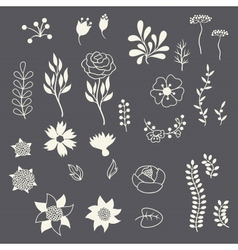Romantic floral elements various flowers in retro vector image