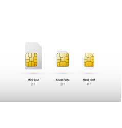 sim card overview comparison of types and sizes vector image