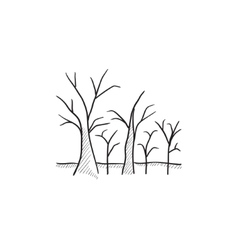 Tree with bare branches sketch icon vector image vector image