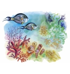 Watercolor Marine life background with Tropical vector image