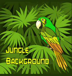 parrot and green leaves vector image