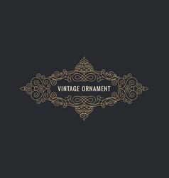 calligraphic elegant ornament frame lines vector image vector image