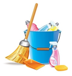 Bucket With Detergents vector image