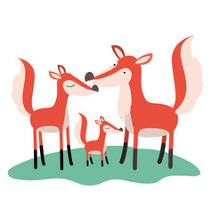 cartoon fox couple and cub over grass in colorful vector image