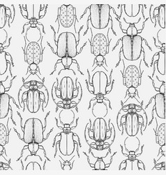 hand drawn bugs in vintage style seamless pattern vector image