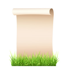 old paper sheet in green grass vector image