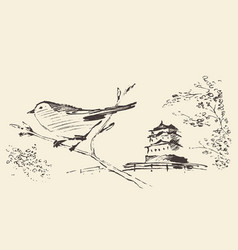 Oriental sakura bird drawn sketch vector