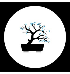 small bonsai plant with blue flowers silhouette vector image