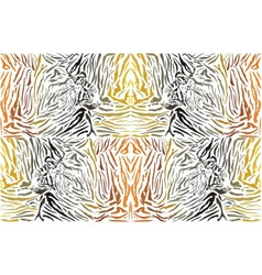 Pattern background tiger with head vector image