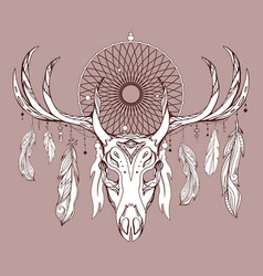 a deer skull with antlers dreamcatcher and feat vector image
