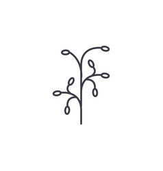 botanical branch line icon concept botanical vector image