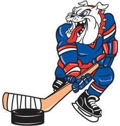 bull dog hockey logo mascot vector image