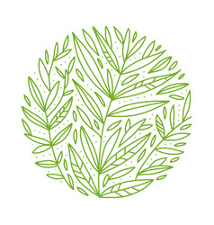 green foliage botanical round sketch of vector image