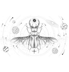 Solar system and stag beetle vector