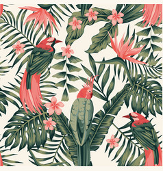 Tropical plants flowers birds abstract colors vector