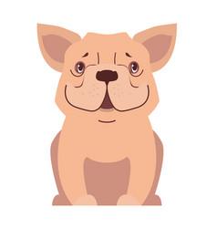cute small dog cartoon flat icon vector image vector image