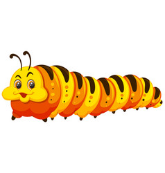 A caterpillar on white background vector