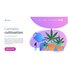 Cannabis cultivation concept landing page vector