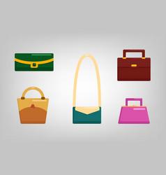 flat bags vector image