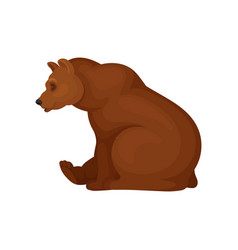 flat icon of sitting brown bear side view vector image