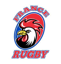 france rugby icon vector image