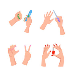 nail service hands and tools vector image