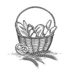 sketch of wheat bakery basket vector image