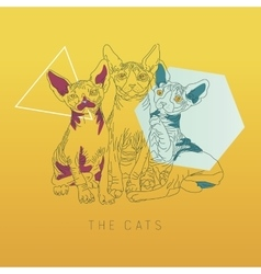 Three thin line cats vector