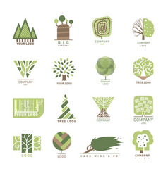 Tree wood oak design element badge modern vector