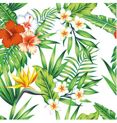 Tropical plants seamless pattern white background vector