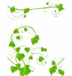 vine designs vector image